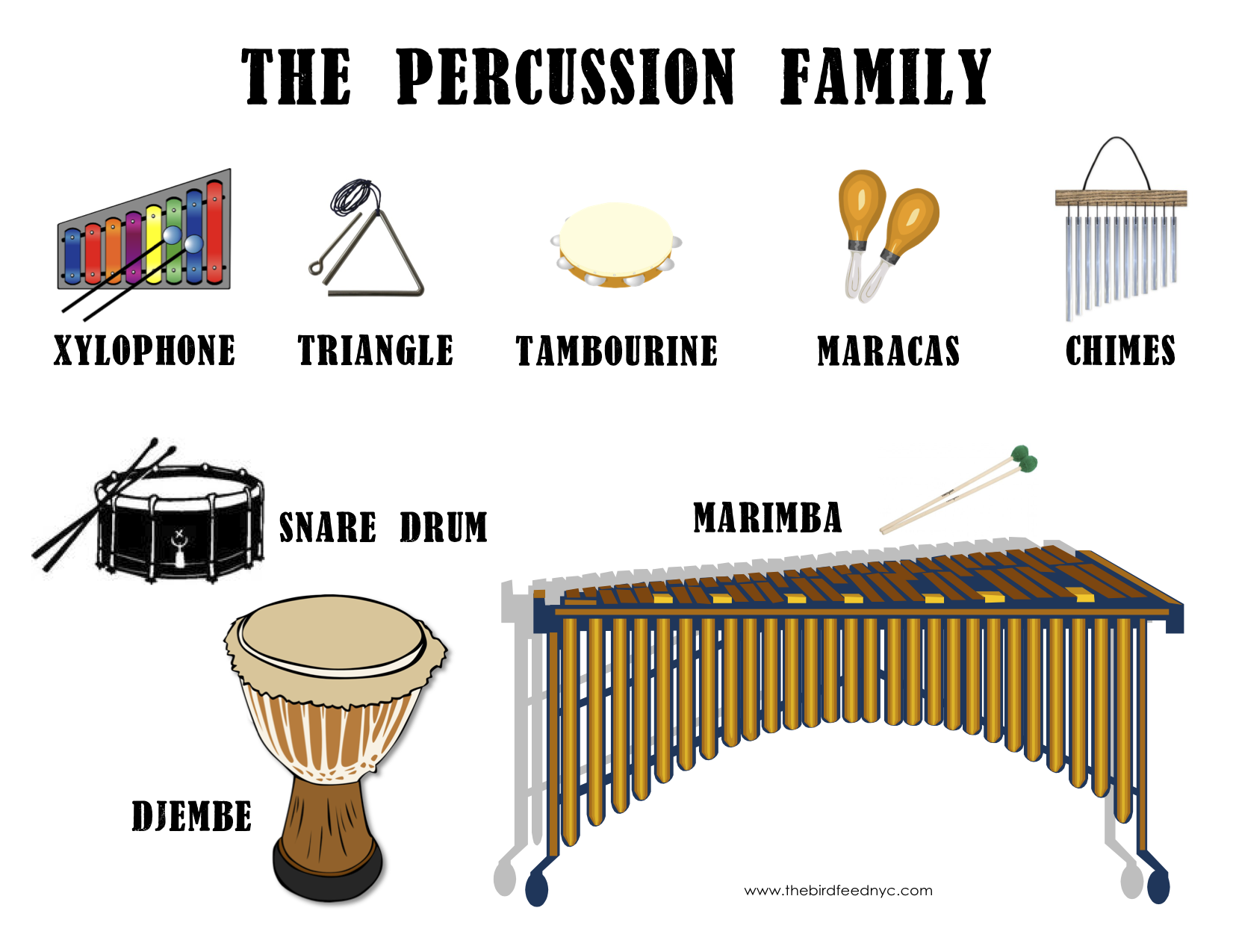 Musical Instrument Families