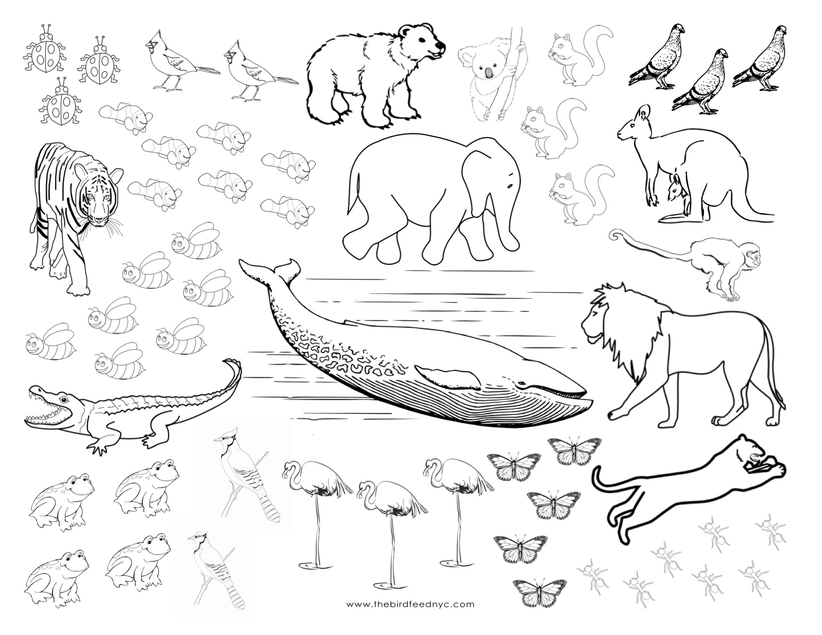 Printable Coloring Pages Domestic Animals