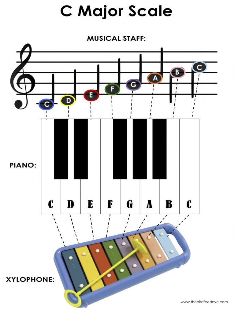graphic relating to Printable Piano Scales identify Sport for Little ones: The C Key Scale upon the Piano and Xylophone